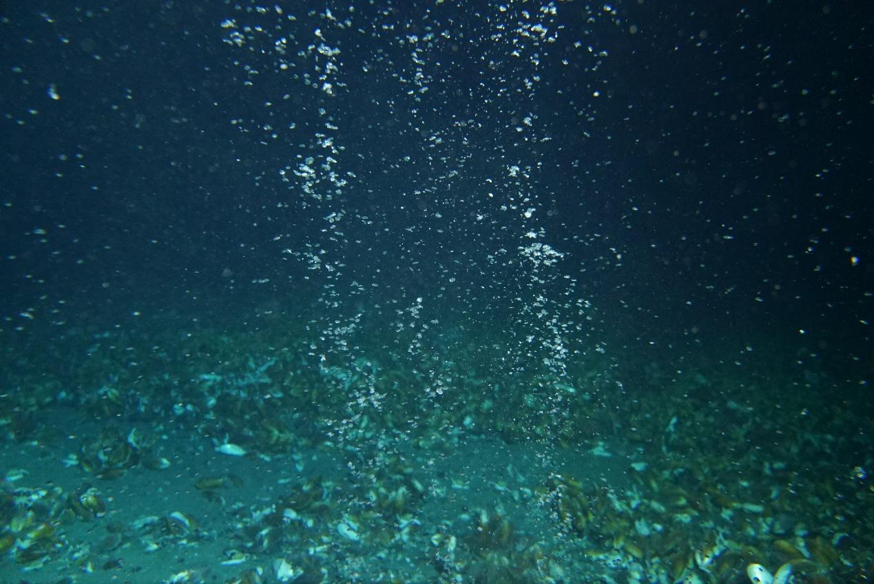 海底甲烷越狱记